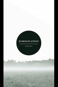 Mani Rao Echolocation Math Paper Press cover